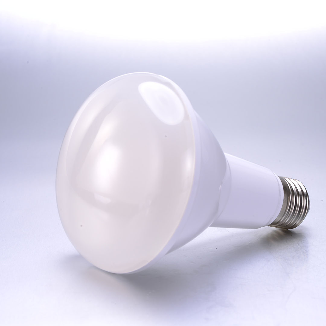 15W COB Led Spot light