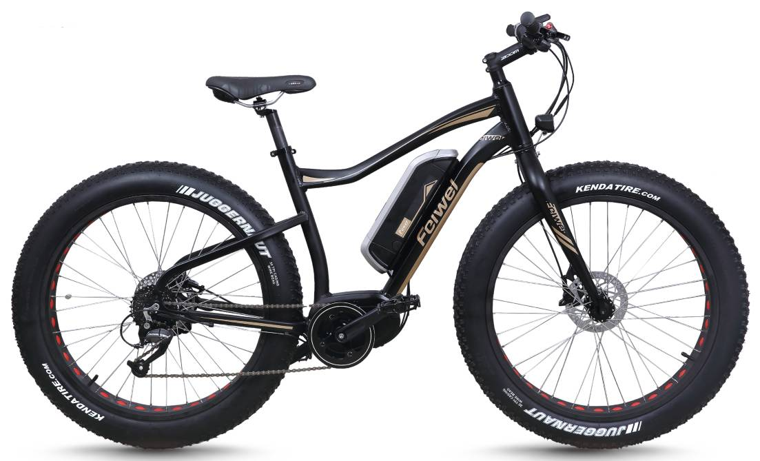 Far tyre mountain electric bike (FR-TDB10Z-2)