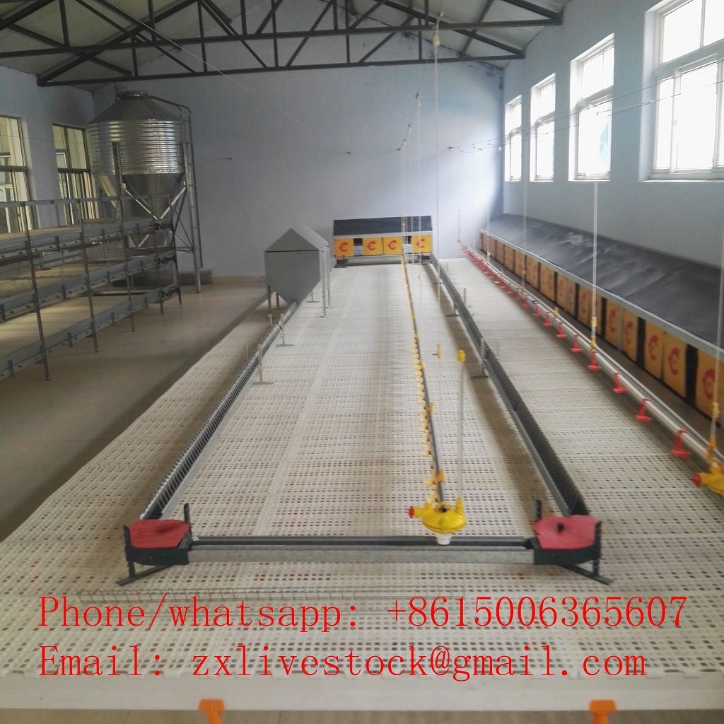 Automatic chicken chain feeding system for poultry farming