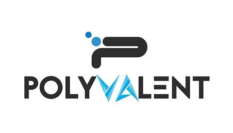 Digital and Email Marketing Company| Polyvalent Digital