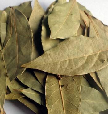 Dried China Bay Leaf