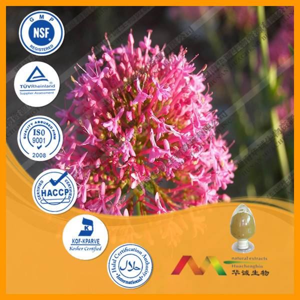 Narural Valerian Extract Powder