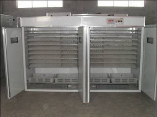 Egg Incubator And Hatcher 3520 Chicken Eggs
