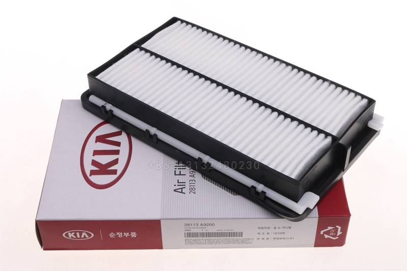 automotive air filter OEM 965534500 oem 1444-N2 FOR kIA