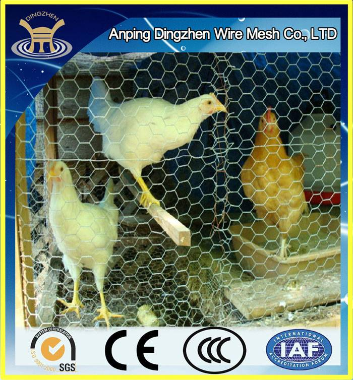 High Quality Used Hexagonal Chicken Wire Mesh For Sale