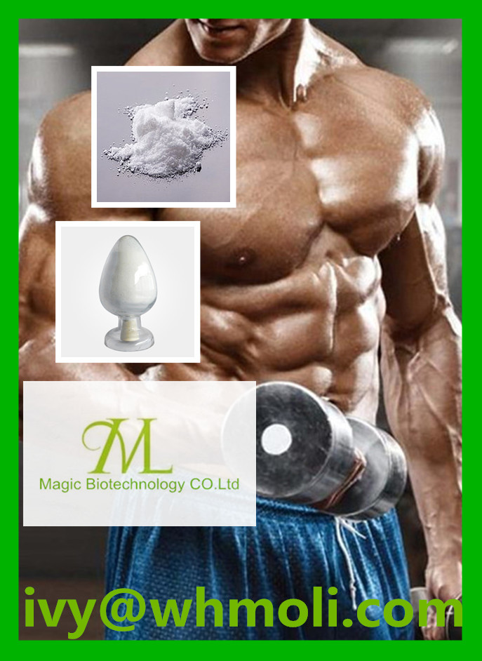 Highly Effective Steroid Powder Testosterone Phenylpropionate for Bodybuilding