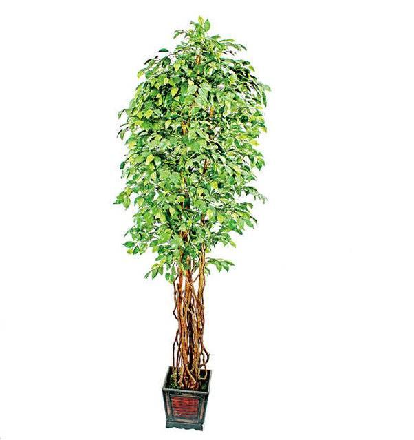 huge artificial banyan tree(for indoor&outdoor decoration)