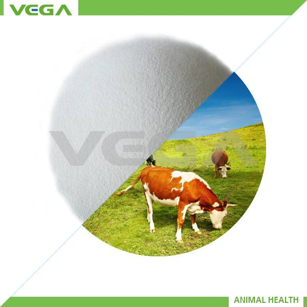 China vitamin c coated in chemicals, ascorbic acid coated manufacturers, suppliers, exporters