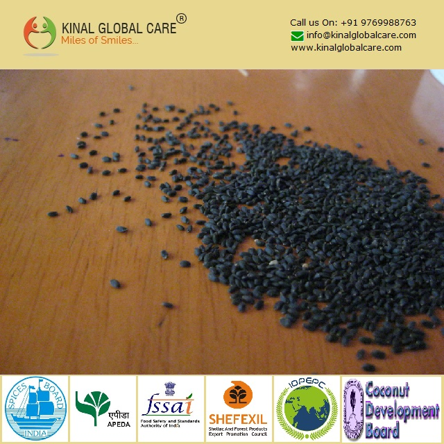 Best Quality Small Basil Seeds