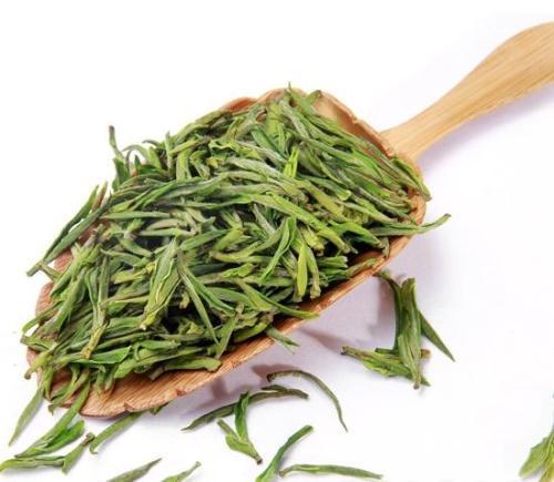 Green tea extract, Water soluble green tea extract Powder, Tea Polyphenols