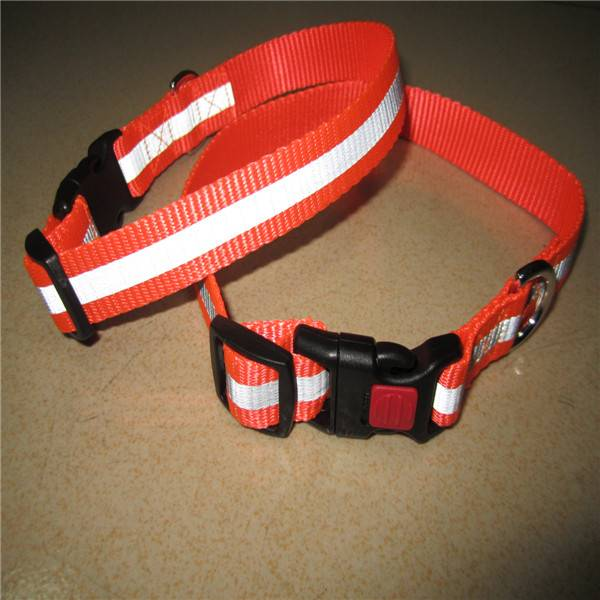 reflective nylon dog collar with lockable side release buckle