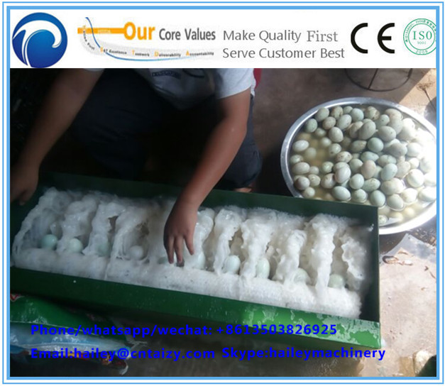 Wash egg machine/duck egg machine/chicken egg machine