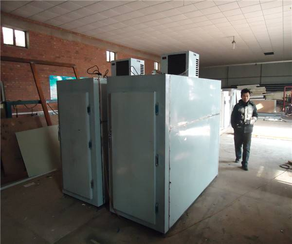 mortuary freezer with low price
