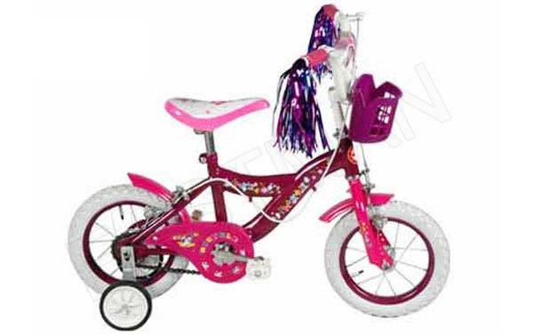 Kids Bicycles Manufacturer