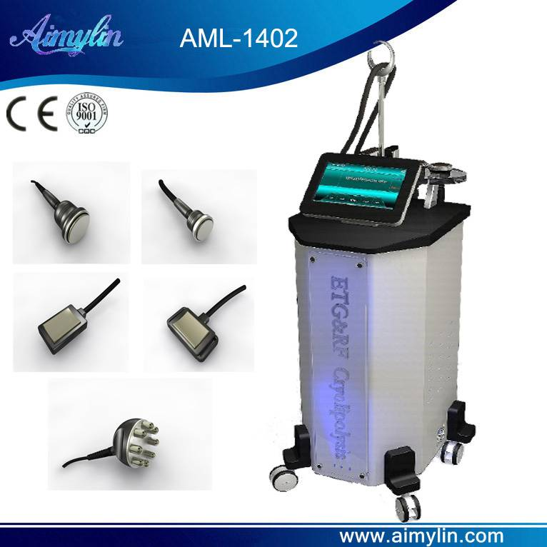 Crylipolysis beauty equipment AML-1402