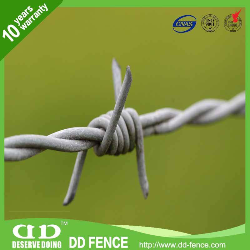 China manufacturer galvanized twisted barbed wire
