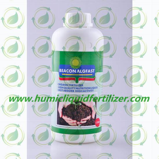 Algfast Concentrated Seaweed Extract Liquid Fertilizer