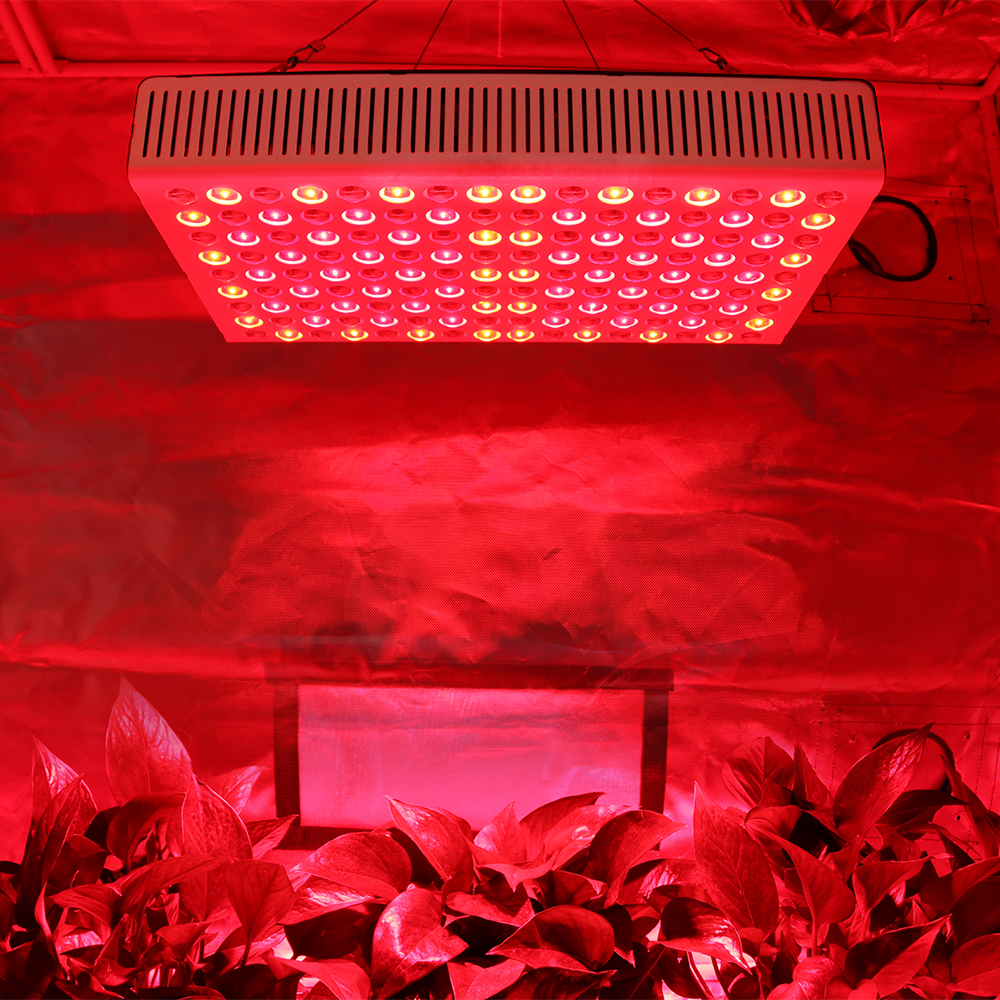 Veg Flower Dual Switchable 5W Dual Chip LED Grow Light Full Spectrum