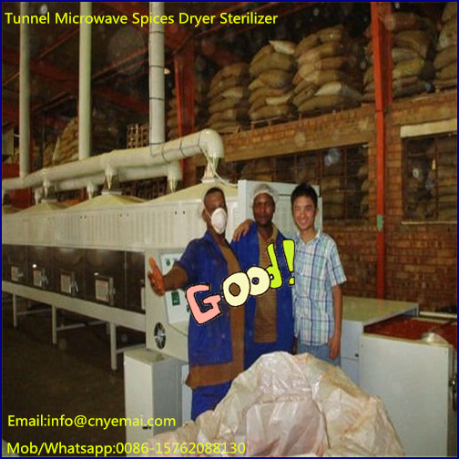 Continuous spices dryer,Microwave spice drying machine