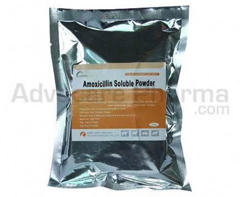 Amoxicillin Soluble Powder 10% 20% 70%