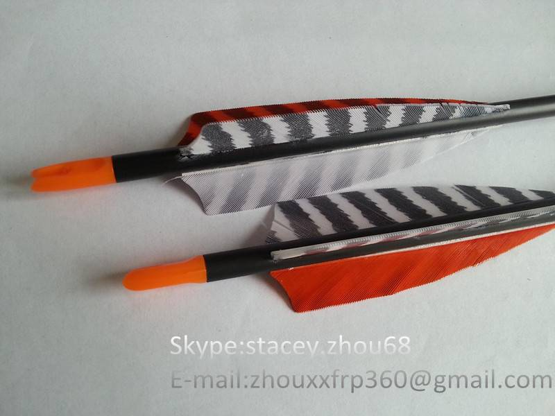 stripe true feather carbon arrows,newest carbon fiber arrows