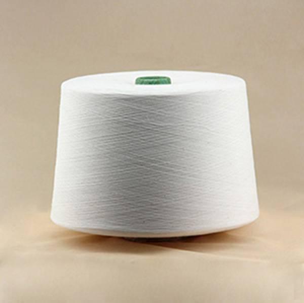 Ne 30/1 100% Polyester Spun Yarn