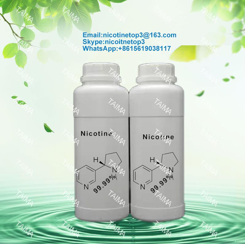 Supply Usp grade 99.99% pure nicotine CAS:54115 by XianTaima