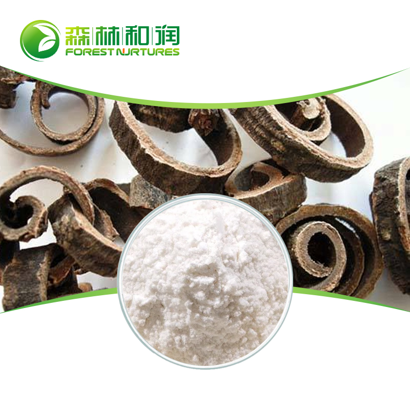 Wholesale High Quality Traditional Chinese Herb Medicine magnolia bark /Cortex Magnoliae Officinalis