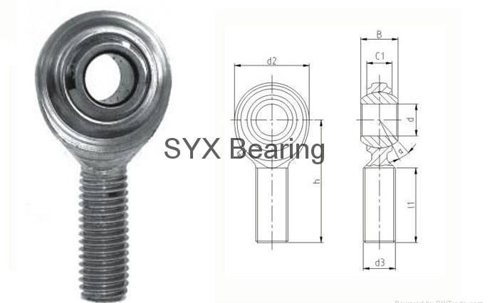 Rod end bearing CM10