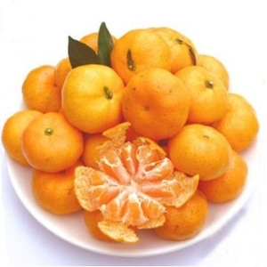 NanFeng Honey Orange