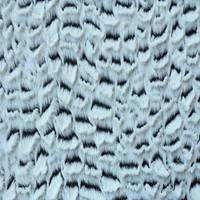 100 polyester brushed tricot pv plush fabric