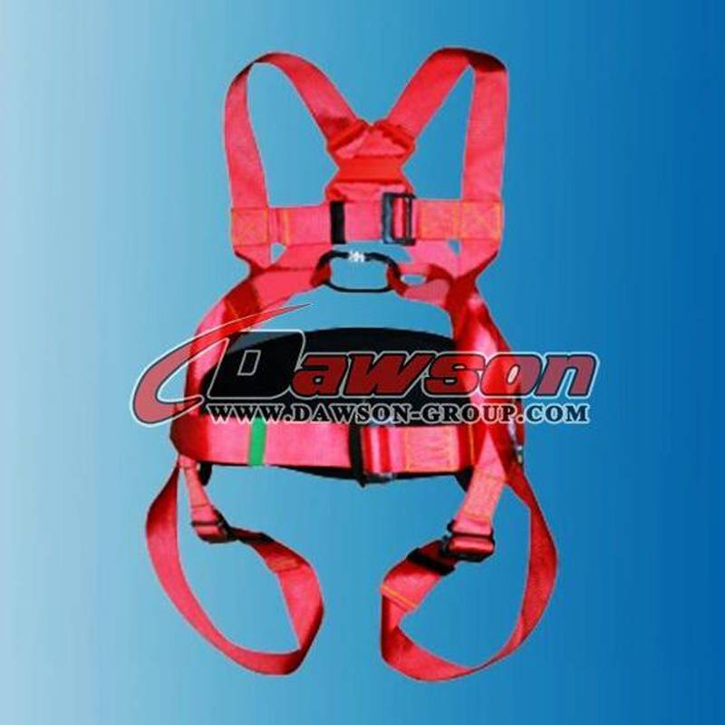 DS5138 SAFETY HARNESS