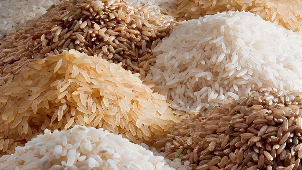 Basmati or Non Basmati Rice