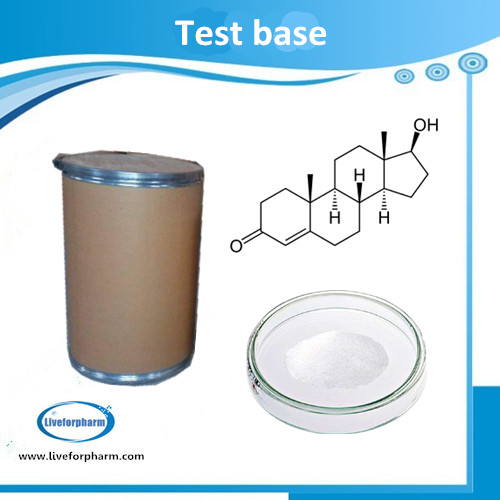 TESTO SERIES Testo Base CAS 58-22- 98.8% above purity