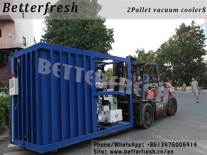Betterfresh vacuum coolers pre cooling vacuum cooling systems for refrigeration Leek Pepper Celery G