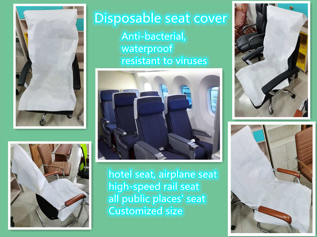 Paper Seat Cover