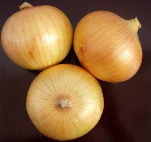 Chinese Yellow Onion