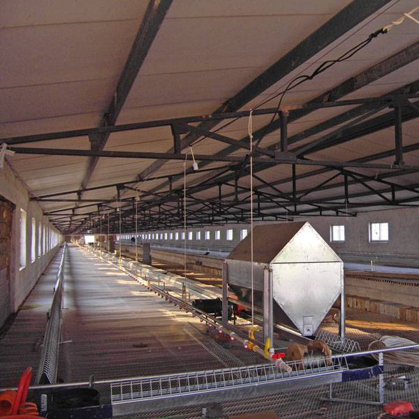 poultry control shed equipment for breeder growing