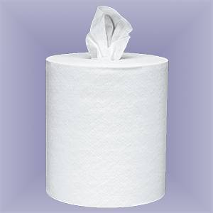 Disposable Towels in Rolls