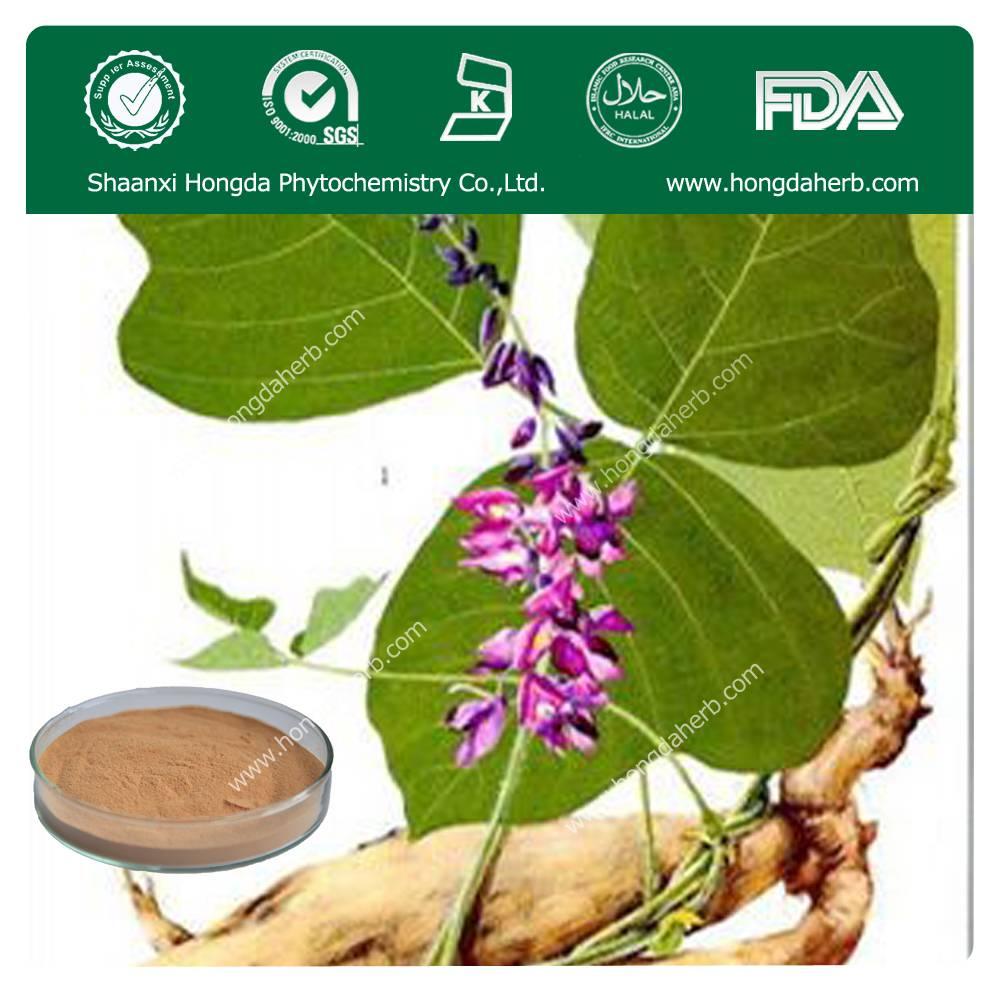 Radix Pueraria Extract 100%pure powder 40%,60%,80% Flavones/Puerarin