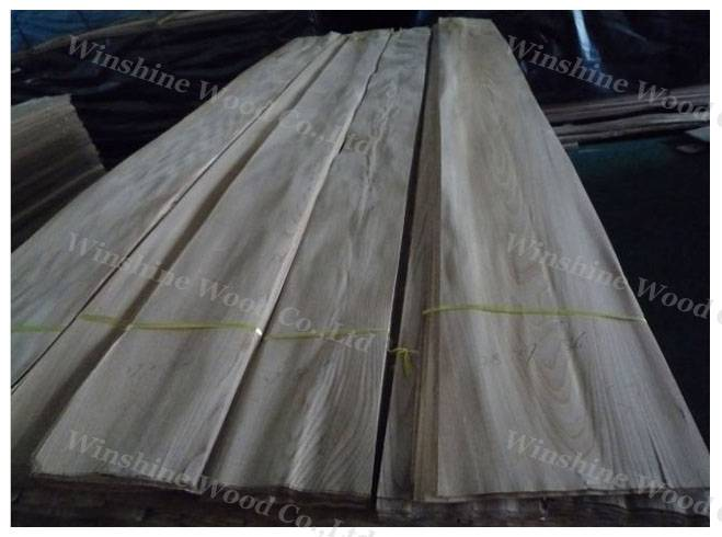 Natural Chinese Elm veneer