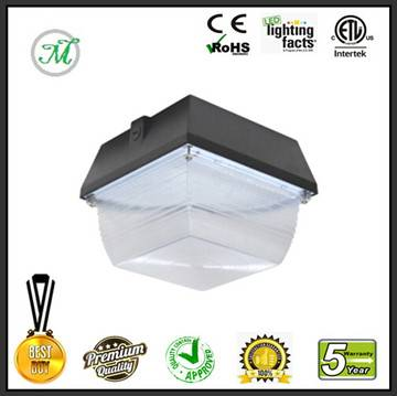 60W LED canopy light