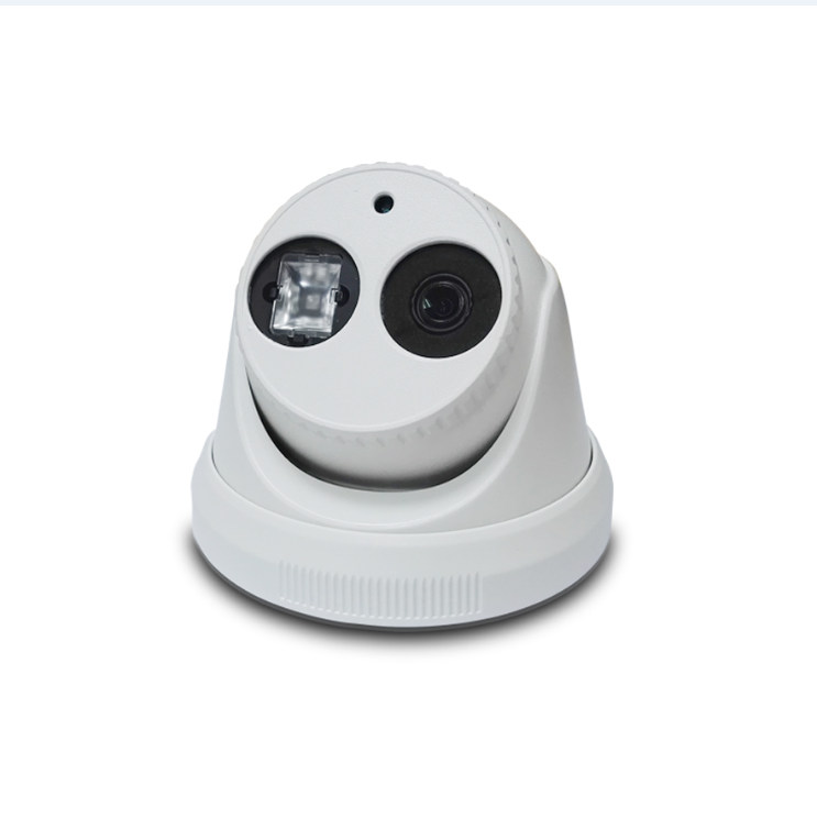 vehicle surveillance dome IP camera with Mobile DVRsystem