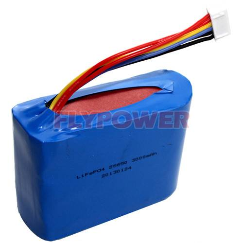 9.6V 3000mAh LiFePO4 Battery Pack (3S1P of FLFC-26650E with PCM)