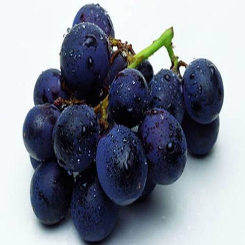 Food additive high quality natural grape skin extract