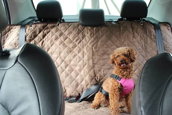 pet car seat cover pet products