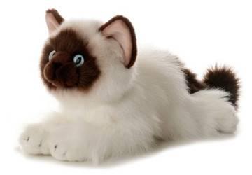 Plush Stuffed Animal Cat Toys
