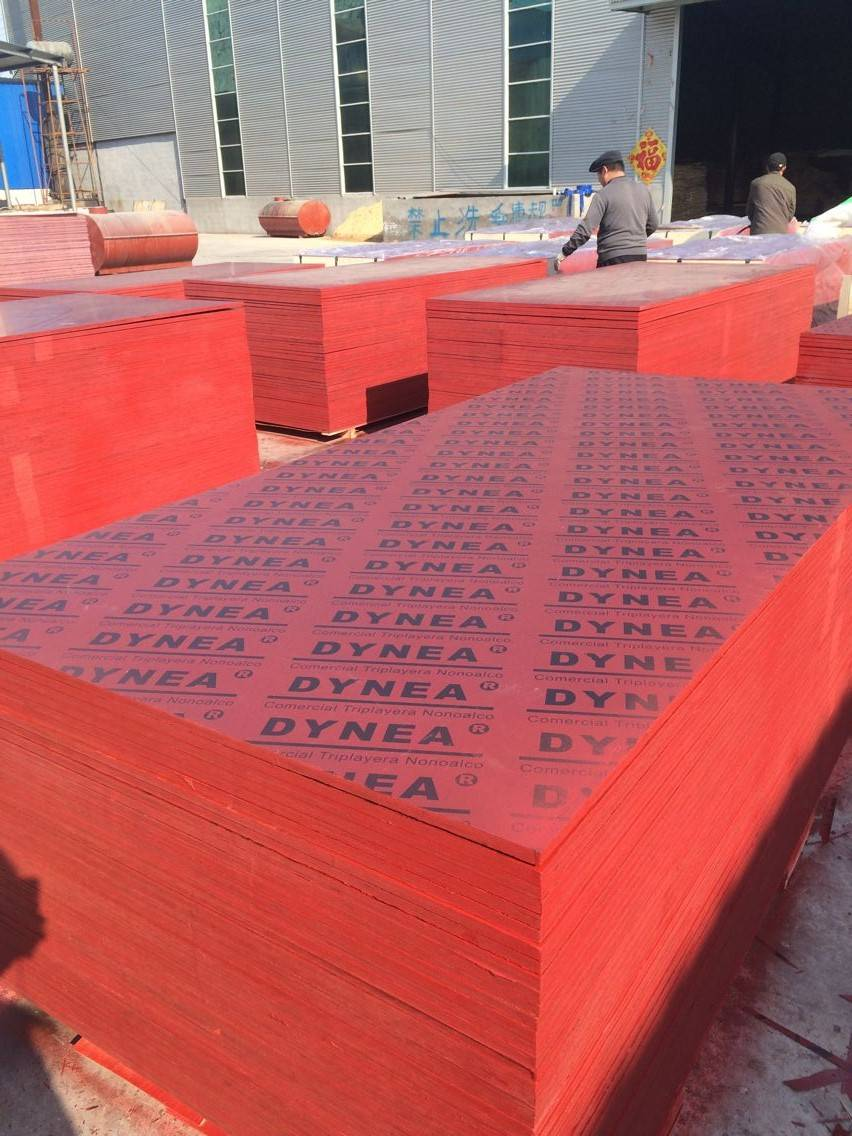 Construction shuttering Plywood for Middle East and Euro