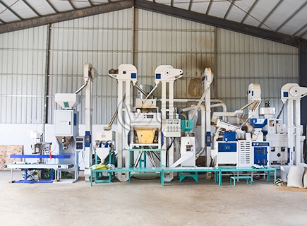 Modern 25T/D Rice Mill Plant for Sale