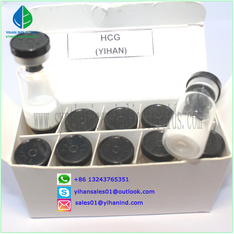 Paypal 99% Purity peptides powder Hgh Fragment 176-191 CAS:221231-10-3 with safe shipping Judy